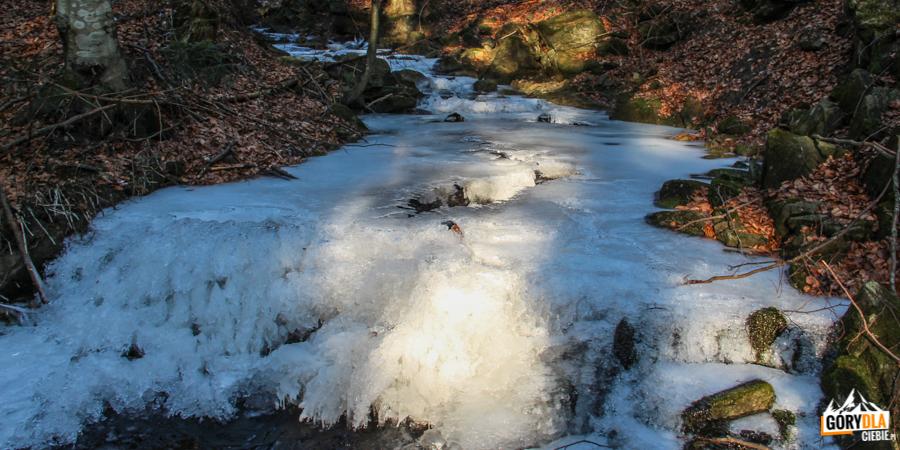 Potok Forędówki