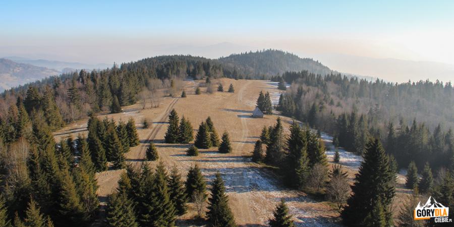 Gorczańska polana widziana z wieży widokowej na Magurkach