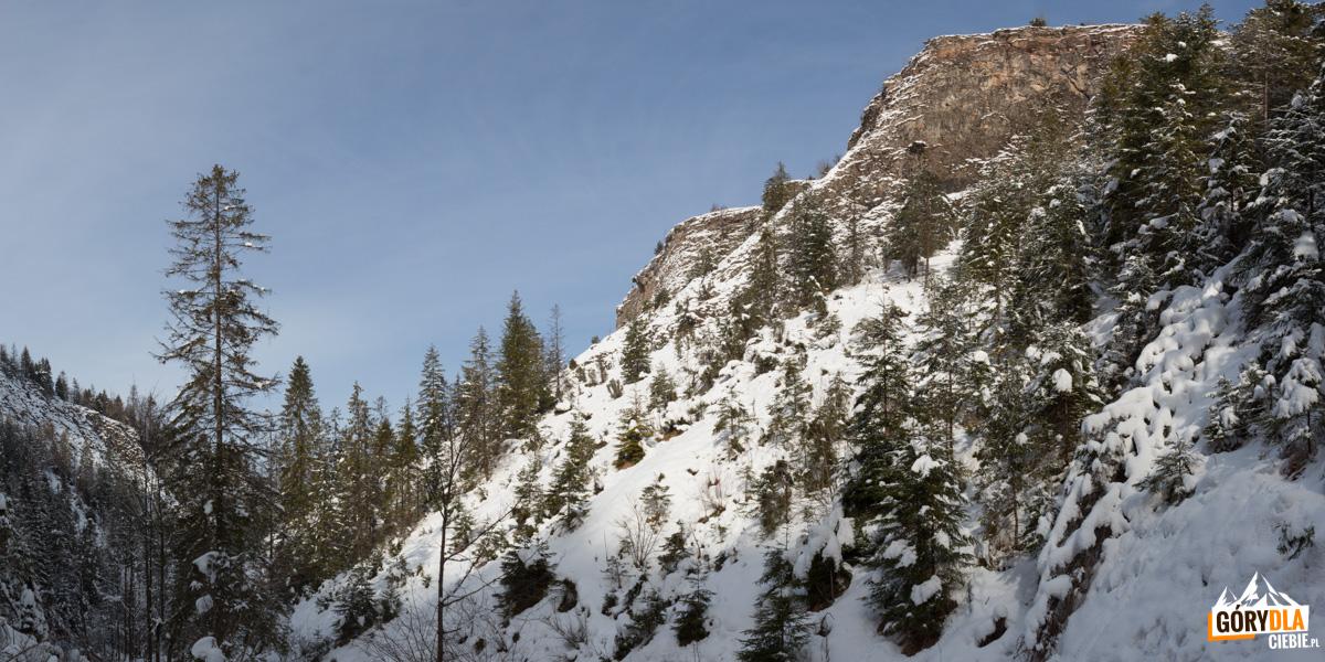 Wysokie skały otaczające Wąwóz Homole