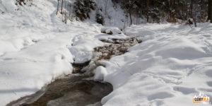 Zimowy potok Kamionka w Wąwozie Homole