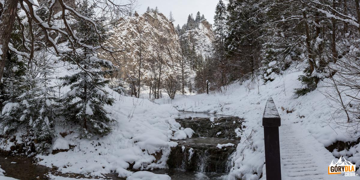 Zimowy potok Kamionka wWąwozie Homole