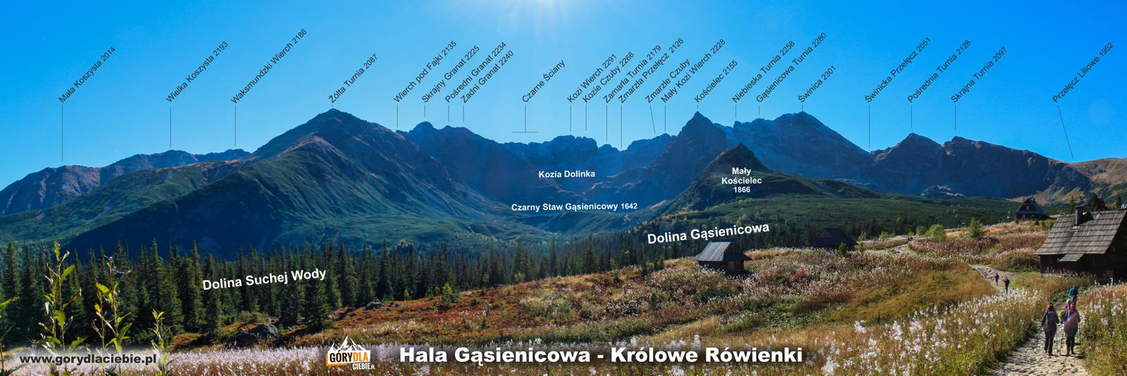 Tatry panorama z Hali Gąsienicowej (Królowe Rówienki)