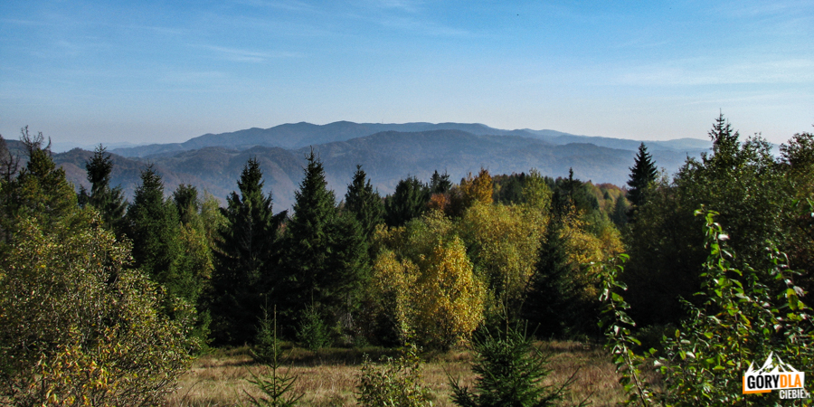 Pasmo Przehyby i Radziejowej widziane ze szlaku na Lubań