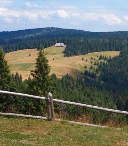 9 tras w Gorcach