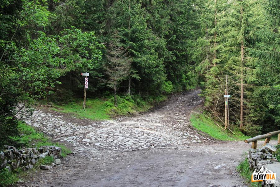 Czerwony szlak na Trzydniowiański Wierch (1758 m)