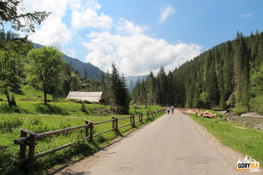 Droga z Polany Hucisko do Niżniej Bramy Chochołowskiej