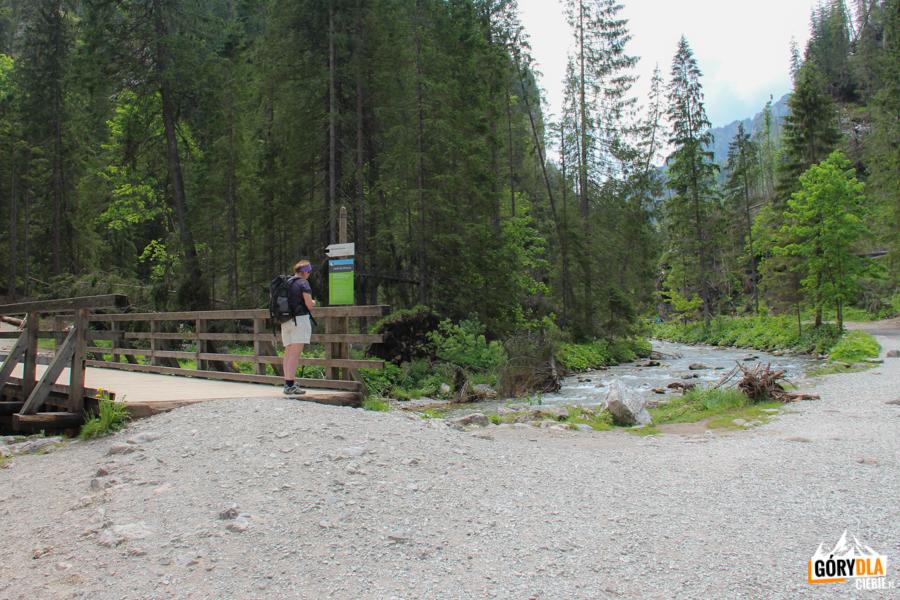 Ścieżka do Jaskini Mroźnej w Dolinie Kościeliskiej