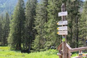Żółty szlak na Przełęcz Iwaniacką