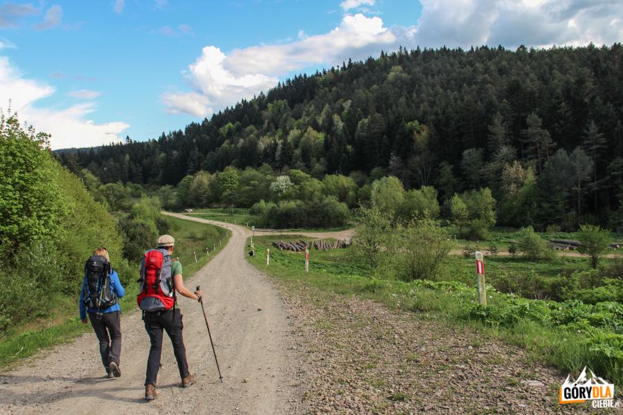 Droga prowadząca od Farfurni, pierwsza w prawo do Białego Potoku