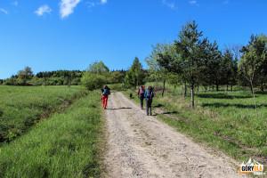 Czerwony szlak z Chyrowej - do Pustelni św. Jana z Dukli