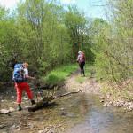 Droga do Olchowca