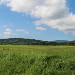 Połoniny widziane z łąk przy drodze do Bieniowej