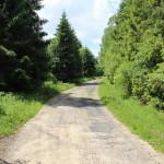 Droga do skrzyżowania nad potokiem Niedźwiedzim