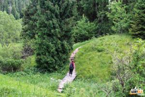 Droga wzdłuż Sanu do Grobu Hrabiny