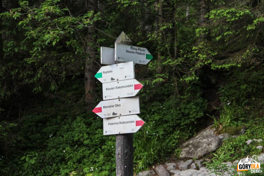 Droga do Morskiego Oka - zielony szlak do Pięciu Stawó, w dół do Roztokiczerwony szlak