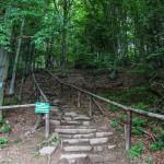 Niebieski szlak z Wołosatego na Tarnicę