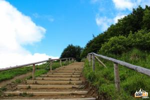 Pierwszy ciągi schodów na szlaku z Wołosatego na Tarnicę