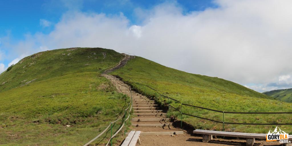 Czerwony szlak zbiega naprzełęcz zTarniczki (1315 m)