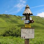 Rozwidlenie szlaków na Przełęczy GOPRowskiej (1160 m)