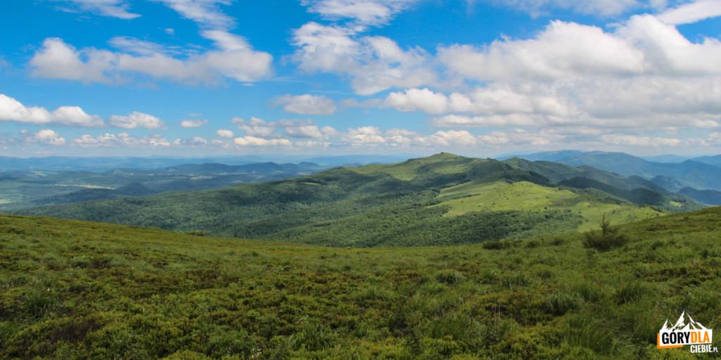 Panorama spod szczytu Rozsypańca (1280 m) wkierunku Kińczyka Bukowskiego (1251 m)