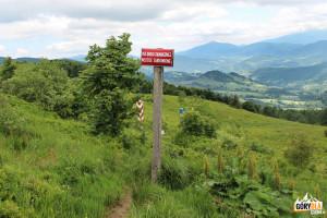 Granica polsko-ukraińska na Przełęczy Bukowskiej (1107 m)