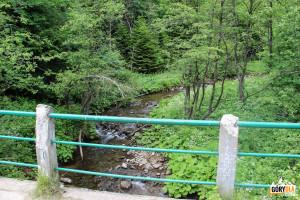 Potok Wołosatka