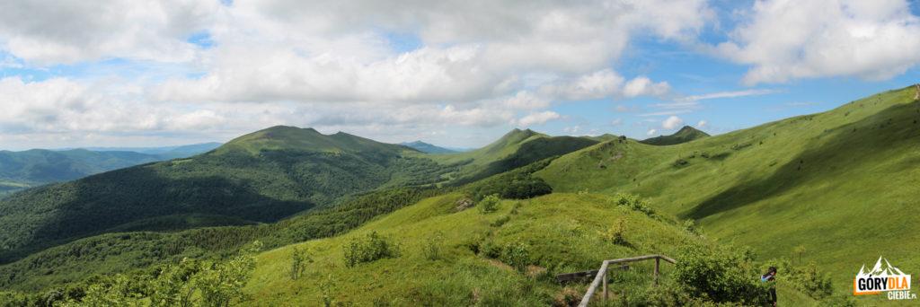 Widok zRozsypańca (1280 m) naTarnicę, kopę Bukowską iHalicz