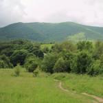 Zielony szlak biegnie przez łąki, gdzie kiedyś tały zabudowanaia Berehów Górnych