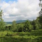 Widok z zielonego szlaku na Połoninę Caryńską w kirerunku Połoniny Wetlińskiej