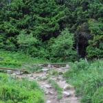 W drodze na Połoninę Caryńską z Przełęczy Wyniańskiej