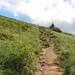 Podejście na Połoninę Caryńską od Przełęczy Wyżniańskiej