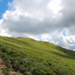 Widok na Połoninę Caryńską (czerwony szlak z Brzegów Górnych)