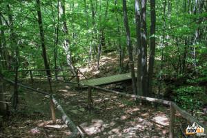 Mostek nad jednym z potoczków przy czerwonym szlaku Brzegi Górne - Caryńska