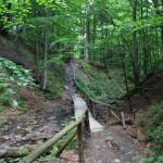 Przy czerwonym szlaku Brzegi Górne - Caryńska