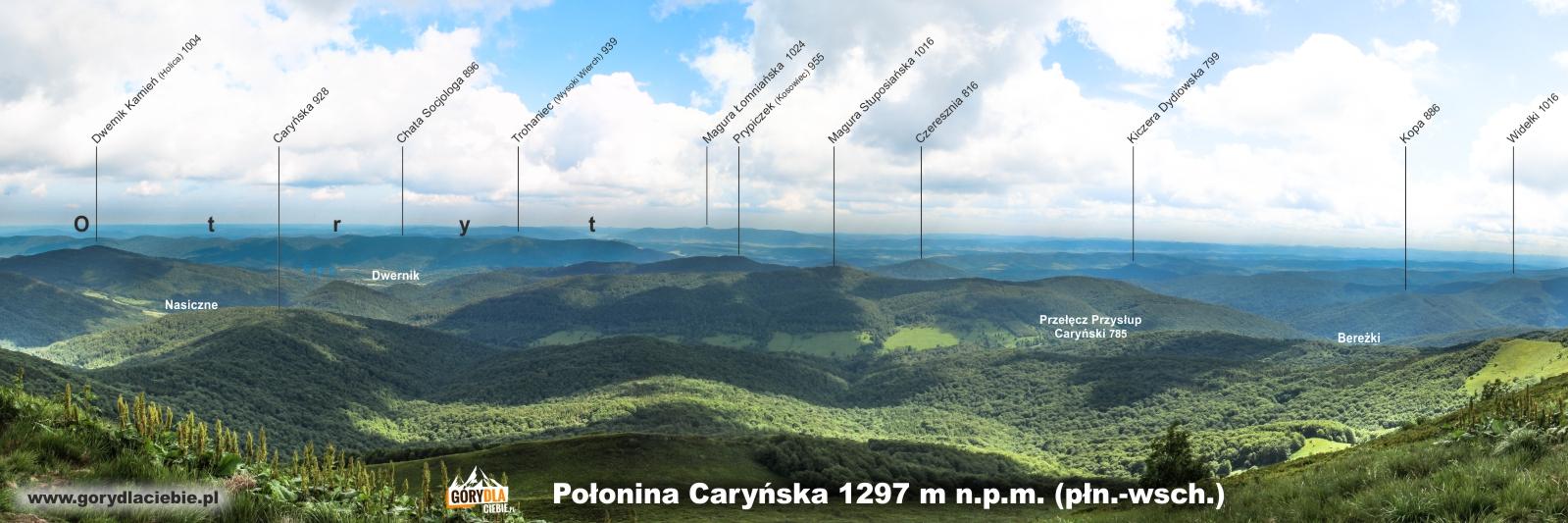 Opisana panorama z Połoniny Caryńskiej