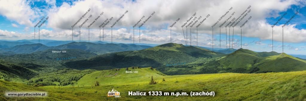 Panorama (zopisem) zHalicza wkierunku zachodnim