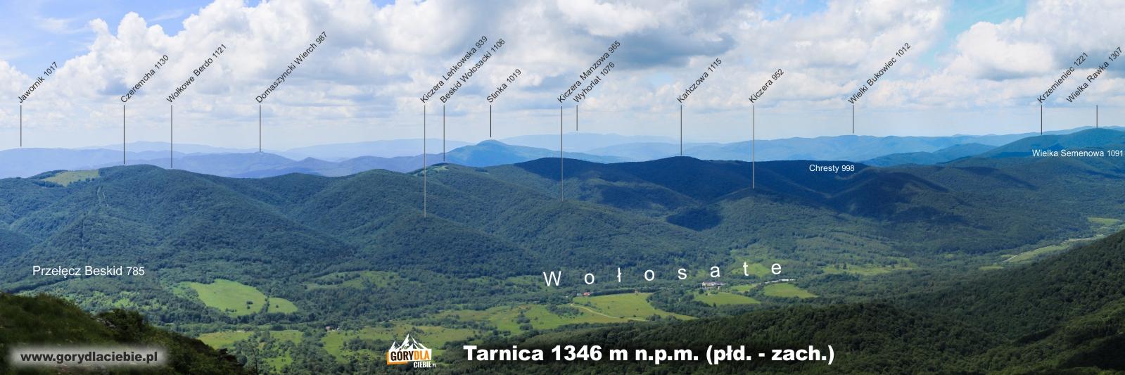 Panorama z Tarnicy na płd.-zach. (opis)