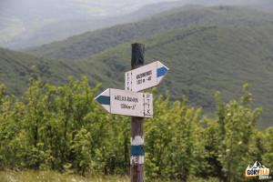 Niebieski szlak Wielka Rawka - Krzemieniec