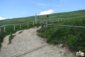 Zejscie żółtym szlakiem z Połoniny Wetlińskiej na Przełęcz Wyżnią