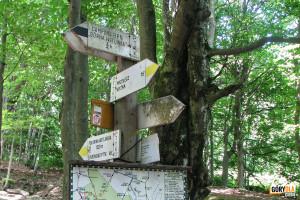 """Zejście żółtym szlakiem z Połoniny Wetlińskiej na Przełęcz Wyżnią, czarny szlak odchodzi na Kemping """"Górna Wetlinka"""""""