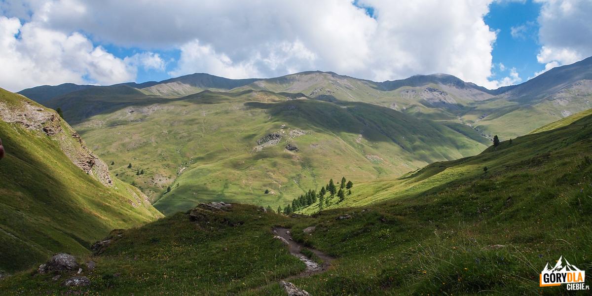 Ścieżka prowadzi zieloną doliną, wzdłuż strumienia.
