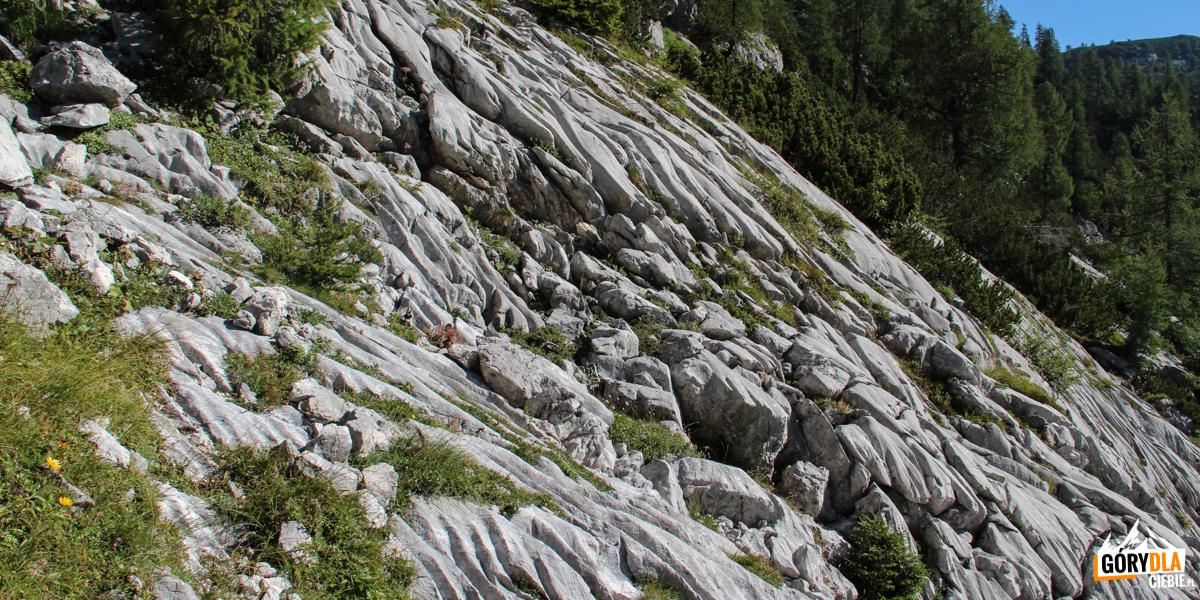 Oryginalna wapienna skała na naszej trasie