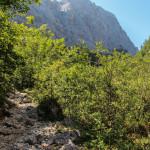 Na szlaku na Triglav - wyjście z parkingu Pri lesi