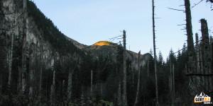 Na szlaku w Dolinie Roztoki - w słońcu świstowa Czuba