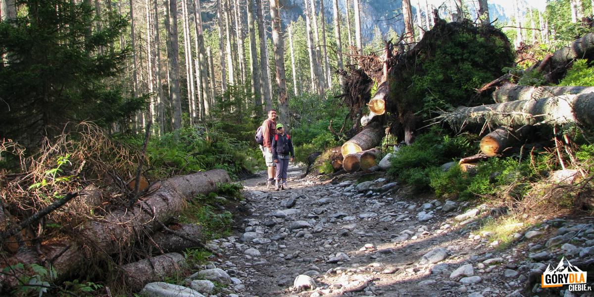 Na szlaku w Dolinie Roztoki