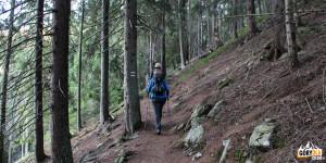 Podejście zielonym szlakiem na Otargańce