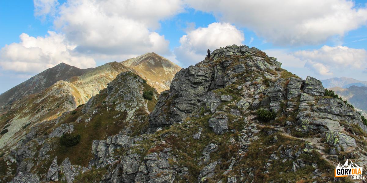Widok ze szczytu Pośredniej Magury (2050 m) na dalszą część grani w kierunku Raczkowej Czuby (2194 m)