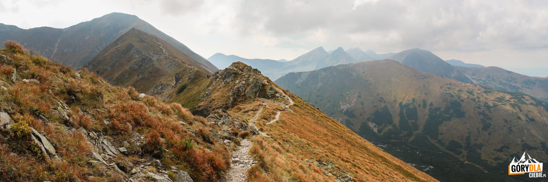 Widok z grani pod Kończystym Wierchem (2003 m) w kierunku Jarząbczego Wierchu (2137), dalej widoczne Rohacze – Płaczliwy (2125 m) i Ostry (2088 m), Wołowiec (2064 m) i Łopata (1958 m)