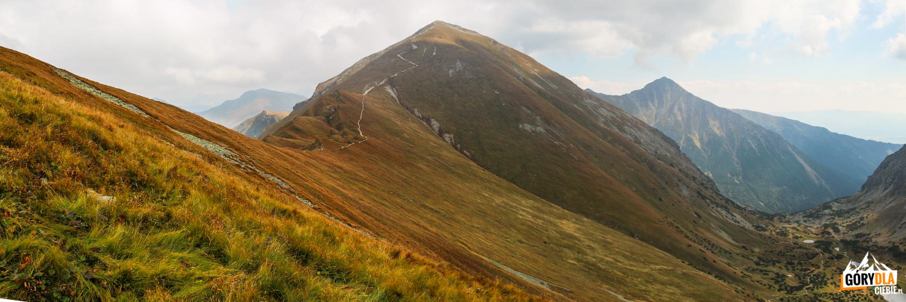 Widok zgrani pomiędzy Kończystym Wierchem (2002 m), aJarząbczym Wierchem (2137 m) naStarorobociański Wierch (2175 m) iZadnią Kopę (2162 m)