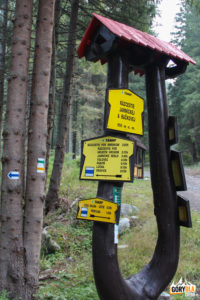 Rozwidlenie Dolin Jamnickiej i Raczkowej (950 m)